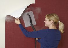 Superb How To Remove Wallpaper Easy #1: Wallpaper Removal With Wallpaper Steamer